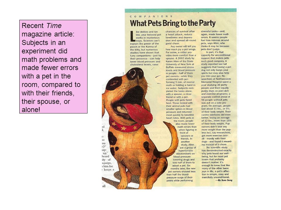 Recent Time magazine article: Subjects in an experiment did math problems and made fewer errors with a pet in the room, compared to with their friends, their spouse, or alone!