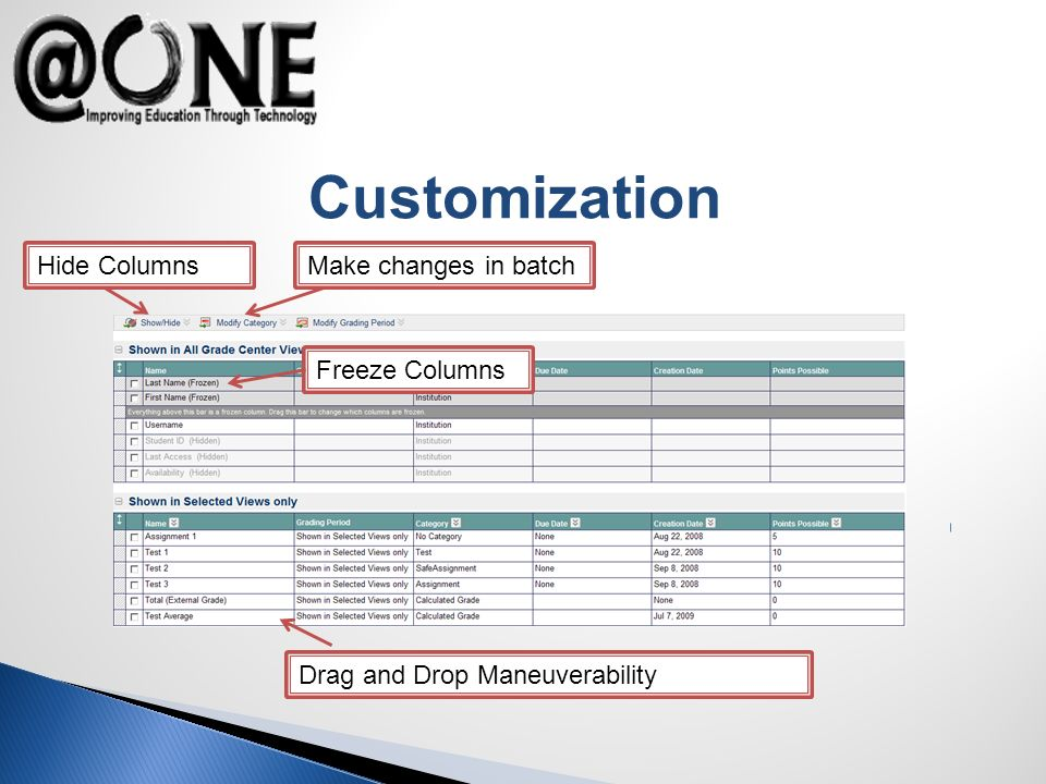 Customization Freeze Columns Hide Columns Drag and Drop Maneuverability Make changes in batch