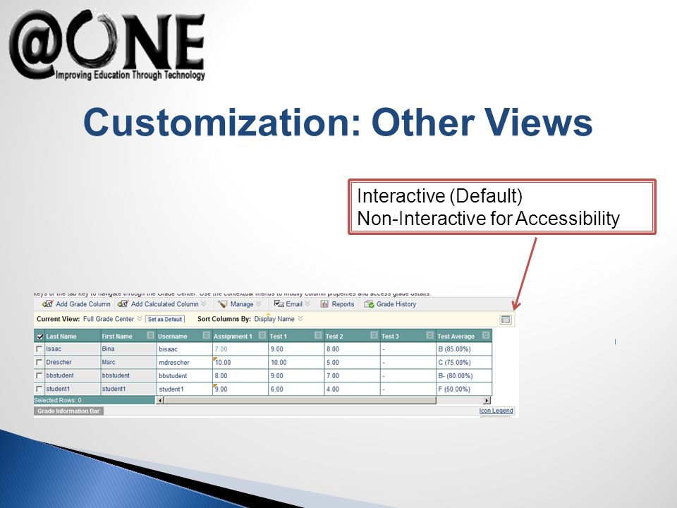 Customization: Other Views Interactive (Default) Non-Interactive for Accessibility