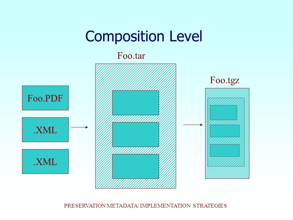 PRESERVATION METADATA: IMPLEMENTATION STRATEGIES Composition Level.XML Foo.PDF.XML Foo.tar Foo.tgz