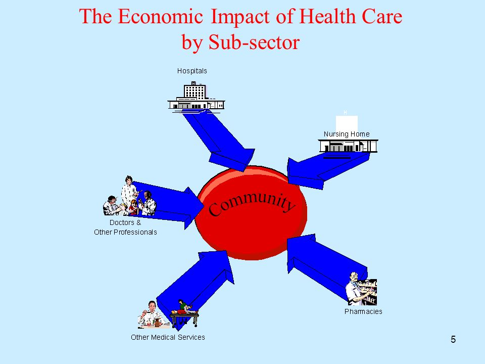 5 The Economic Impact of Health Care by Sub-sector