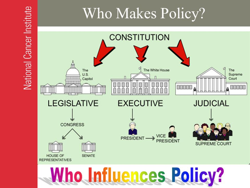 Who Makes Policy