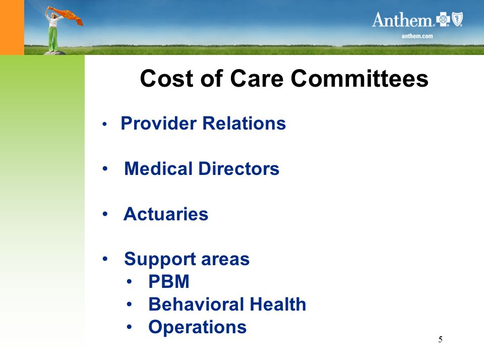 5 Cost of Care Committees Provider Relations Medical Directors Actuaries Support areas PBM Behavioral Health Operations