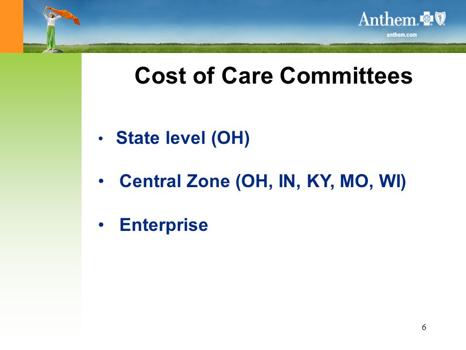 6 Cost of Care Committees State level (OH) Central Zone (OH, IN, KY, MO, WI) Enterprise