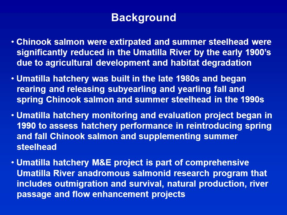 Background Chinook salmon were extirpated and summer steelhead were significantly reduced in the Umatilla River by the early 1900s due to agricultural development and habitat degradation Umatilla hatchery was built in the late 1980s and began rearing and releasing subyearling and yearling fall and spring Chinook salmon and summer steelhead in the 1990s Umatilla hatchery monitoring and evaluation project began in 1990 to assess hatchery performance in reintroducing spring and fall Chinook salmon and supplementing summer steelhead Umatilla hatchery M&E project is part of comprehensive Umatilla River anadromous salmonid research program that includes outmigration and survival, natural production, river passage and flow enhancement projects