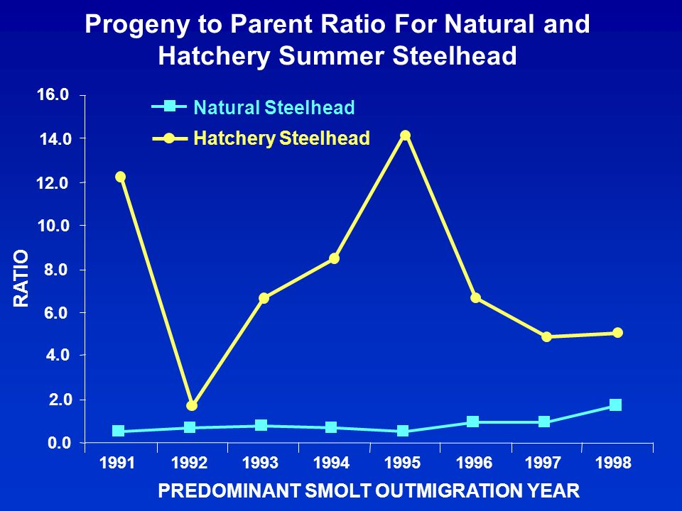 Progeny to Parent Ratio For Natural and Hatchery Summer Steelhead 0.0 2.0 4.0 6.0 8.0 10.0 12.0 14.0 16.0 19911992199319941995199619971998 PREDOMINANT SMOLT OUTMIGRATION YEAR RATIO Natural Steelhead Hatchery Steelhead
