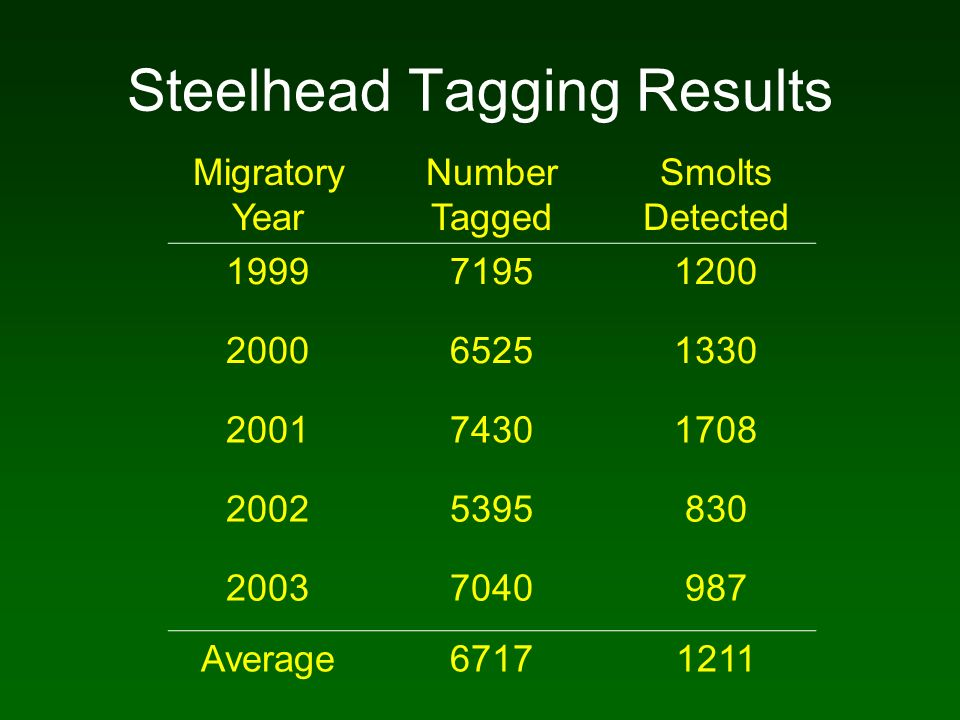 Steelhead Tagging Results Migratory Year Number Tagged Smolts Detected 199971951200 200065251330 200174301708 20025395830 20037040987 Average67171211
