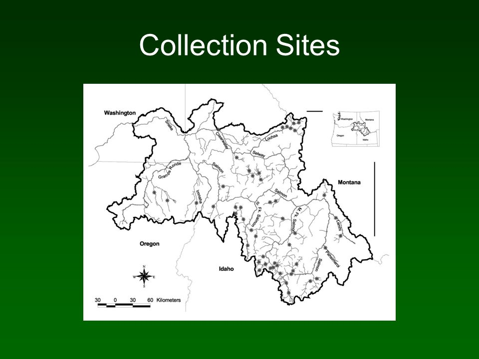Collection Sites