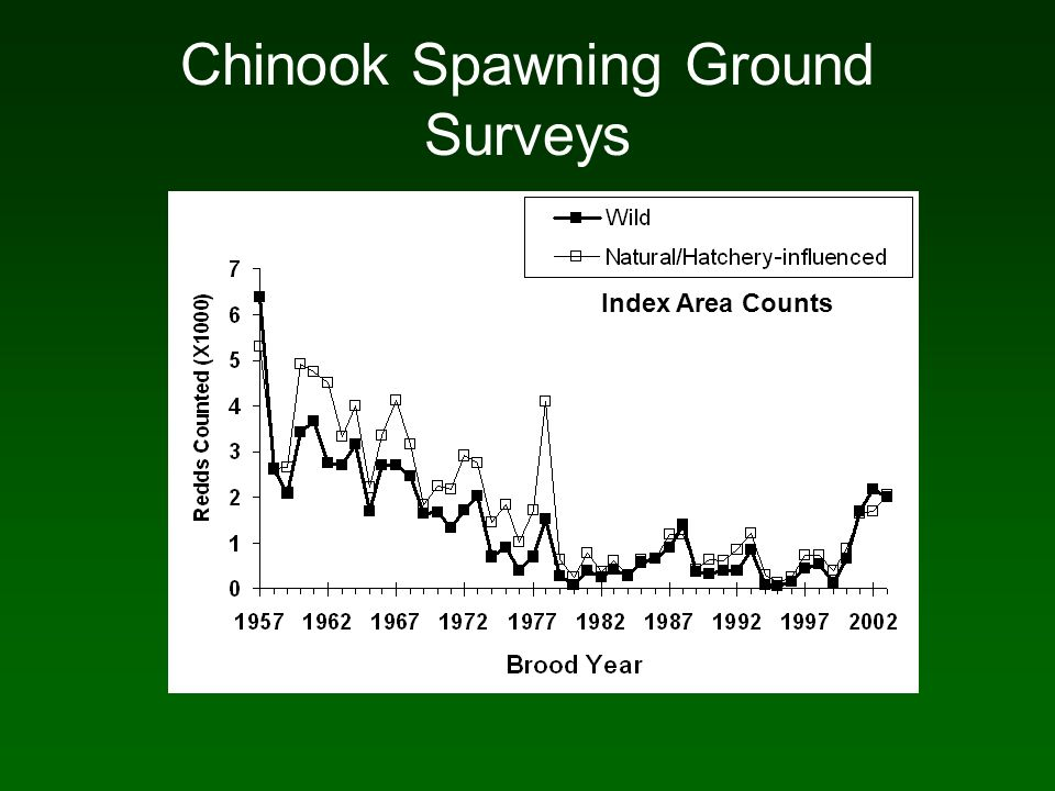 Chinook Spawning Ground Surveys Index Area Counts