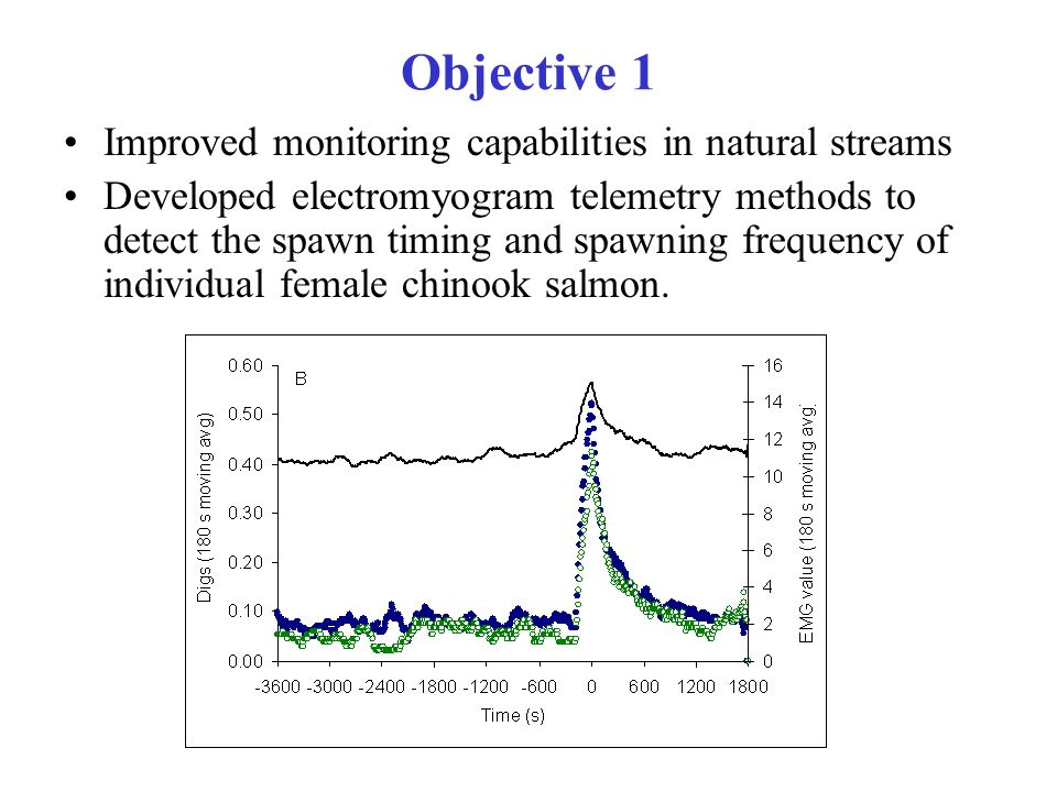 Objective 1 Improved monitoring capabilities in natural streams Developed electromyogram telemetry methods to detect the spawn timing and spawning frequency of individual female chinook salmon.