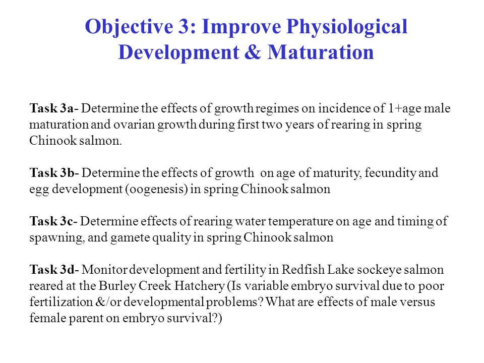 Objective 3: Improve Physiological Development & Maturation Task 3a- Determine the effects of growth regimes on incidence of 1+age male maturation and ovarian growth during first two years of rearing in spring Chinook salmon.