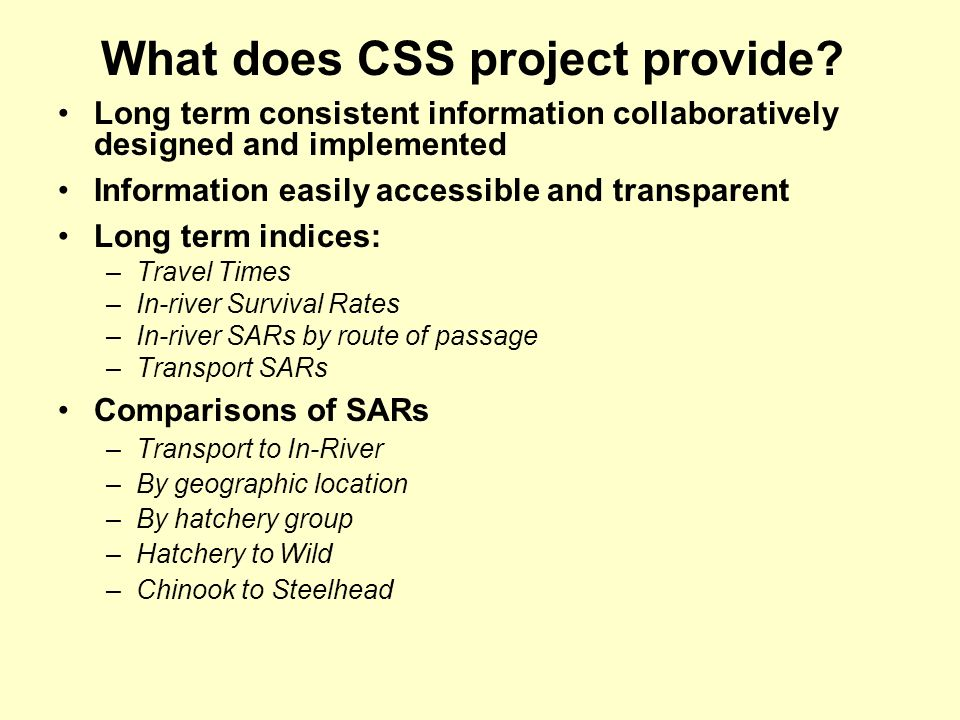 What does CSS project provide.