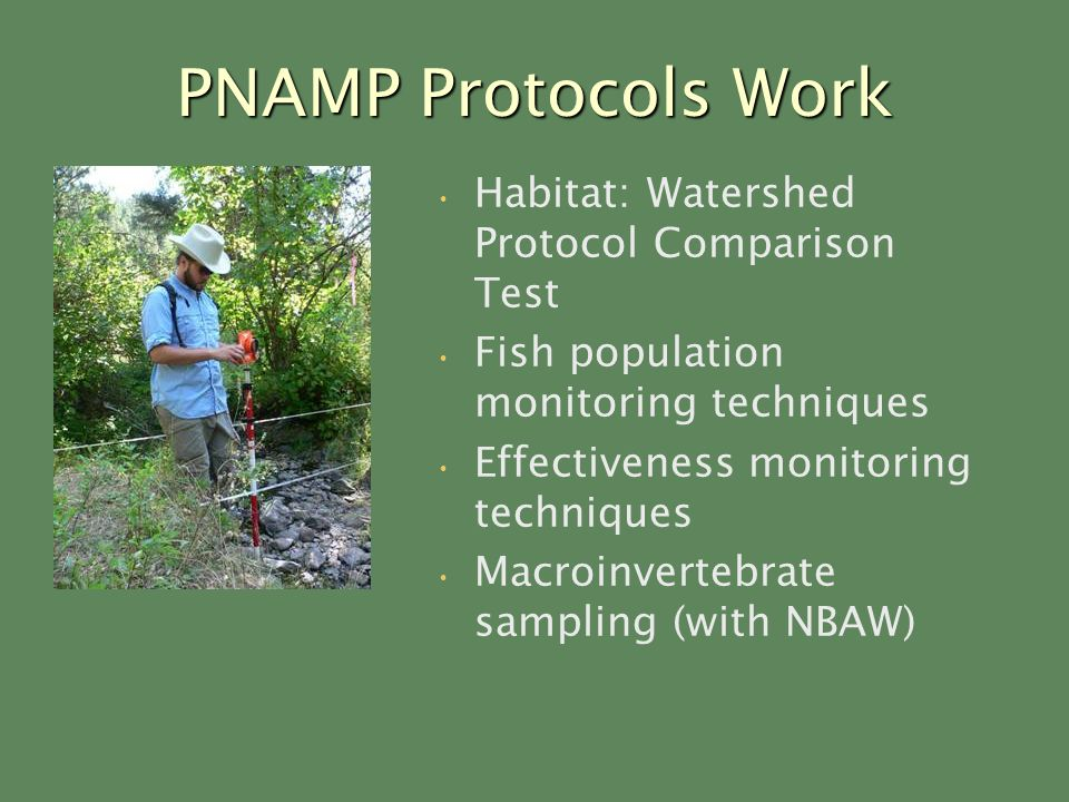 PNAMP Protocols Work Habitat: Watershed Protocol Comparison Test Fish population monitoring techniques Effectiveness monitoring techniques Macroinvertebrate sampling (with NBAW)