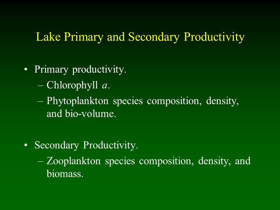 Lake Primary and Secondary Productivity Primary productivity.