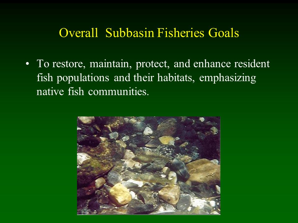 Overall Subbasin Fisheries Goals To restore, maintain, protect, and enhance resident fish populations and their habitats, emphasizing native fish communities.