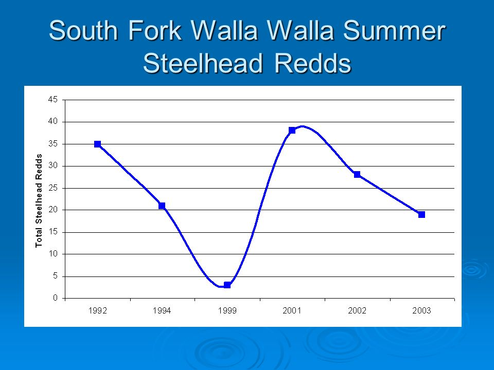 South Fork Walla Walla Summer Steelhead Redds