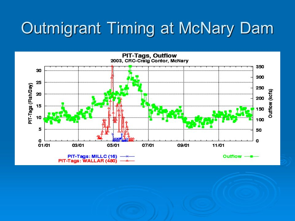 Outmigrant Timing at McNary Dam