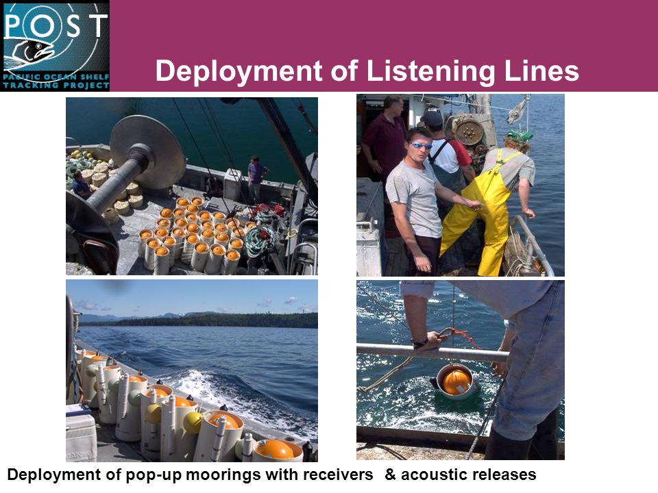 Deployment of Listening Lines Deployment of pop-up moorings with receivers & acoustic releases