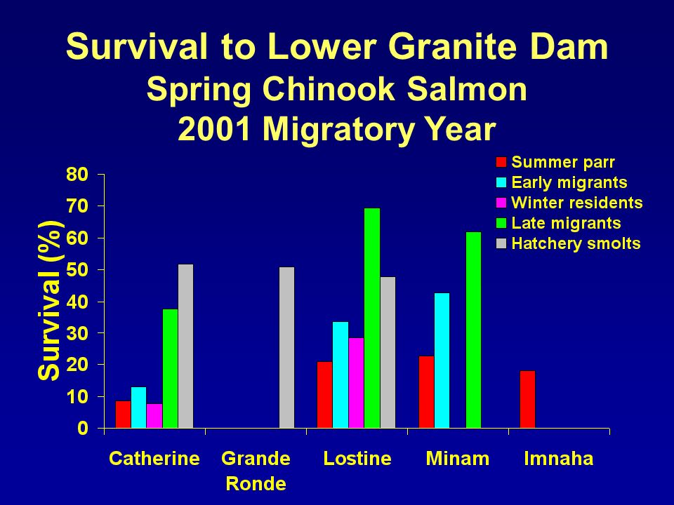 Survival to Lower Granite Dam Spring Chinook Salmon 2001 Migratory Year