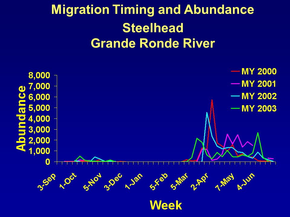Migration Timing and Abundance Steelhead Grande Ronde River
