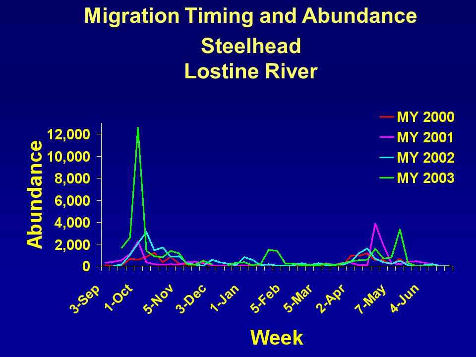 Migration Timing and Abundance Steelhead Lostine River