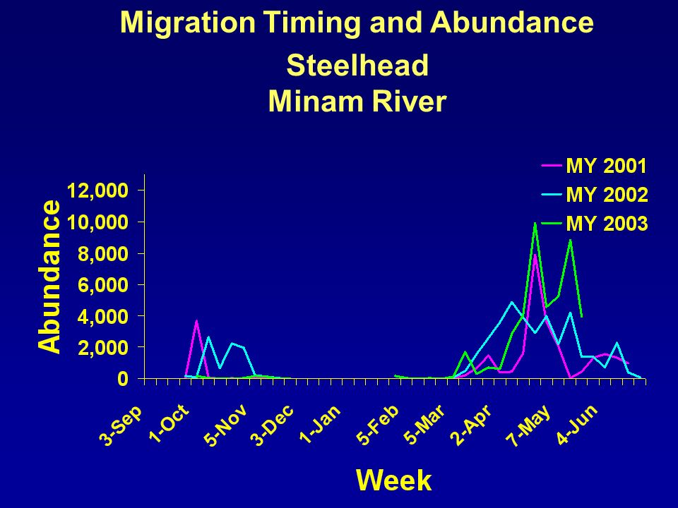 Migration Timing and Abundance Steelhead Minam River
