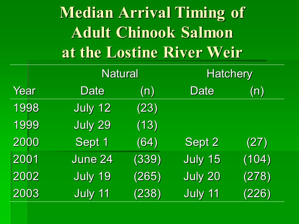 Median Arrival Timing of Adult Chinook Salmon at the Lostine River Weir NaturalHatchery YearDate(n)Date(n) 1998 July 12 (23) 1999 July 29 (13) 2000 Sept 1 (64) Sept 2 (27) 2001 June 24 (339) July 15 (104) 2002 July 19 (265) July 20 (278) 2003 July 11 (238) (226)