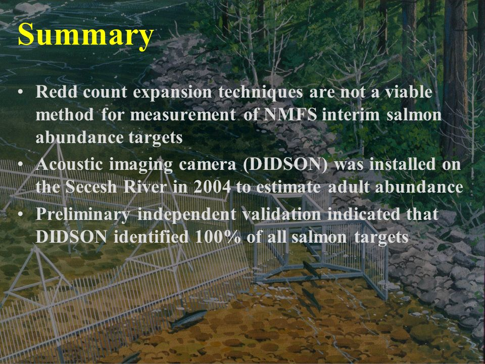 Summary Redd count expansion techniques are not a viable method for measurement of NMFS interim salmon abundance targets Acoustic imaging camera (DIDSON) was installed on the Secesh River in 2004 to estimate adult abundance Preliminary independent validation indicated that DIDSON identified 100% of all salmon targets