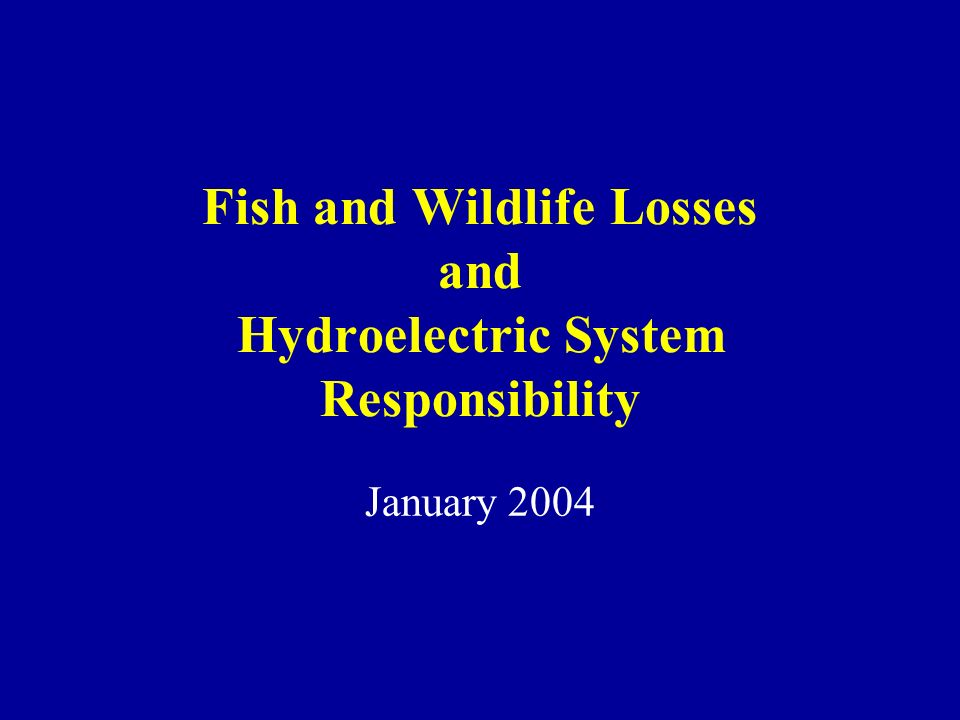 Fish and Wildlife Losses and Hydroelectric System Responsibility January 2004