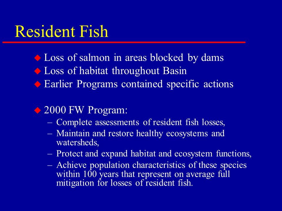 Resident Fish u Loss of salmon in areas blocked by dams u Loss of habitat throughout Basin u Earlier Programs contained specific actions u 2000 FW Program: –Complete assessments of resident fish losses, –Maintain and restore healthy ecosystems and watersheds, –Protect and expand habitat and ecosystem functions, –Achieve population characteristics of these species within 100 years that represent on average full mitigation for losses of resident fish.