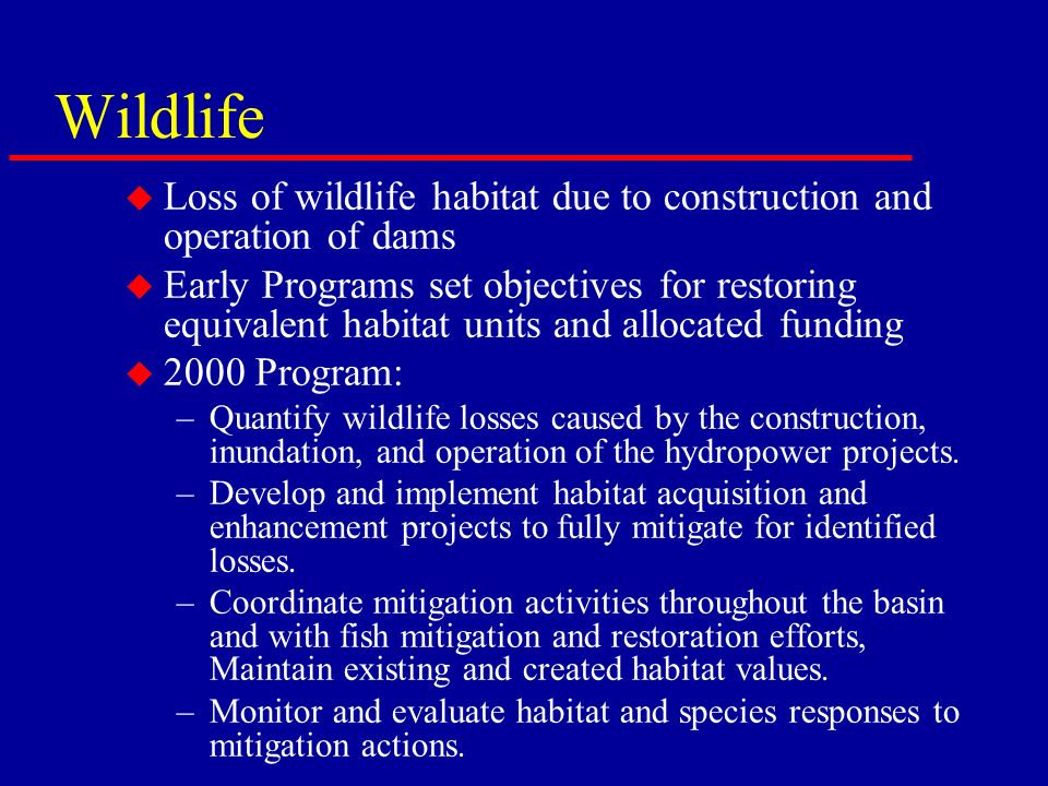 Wildlife u Loss of wildlife habitat due to construction and operation of dams u Early Programs set objectives for restoring equivalent habitat units and allocated funding u 2000 Program: –Quantify wildlife losses caused by the construction, inundation, and operation of the hydropower projects.