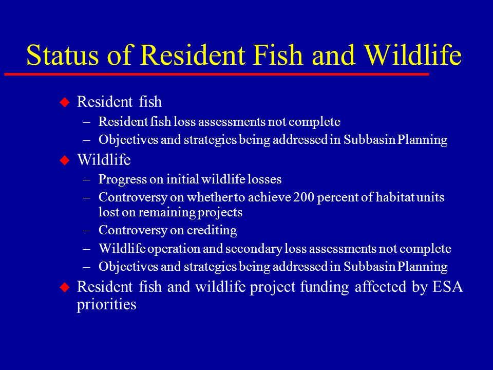 Status of Resident Fish and Wildlife u Resident fish –Resident fish loss assessments not complete –Objectives and strategies being addressed in Subbasin Planning u Wildlife –Progress on initial wildlife losses –Controversy on whether to achieve 200 percent of habitat units lost on remaining projects –Controversy on crediting –Wildlife operation and secondary loss assessments not complete –Objectives and strategies being addressed in Subbasin Planning u Resident fish and wildlife project funding affected by ESA priorities