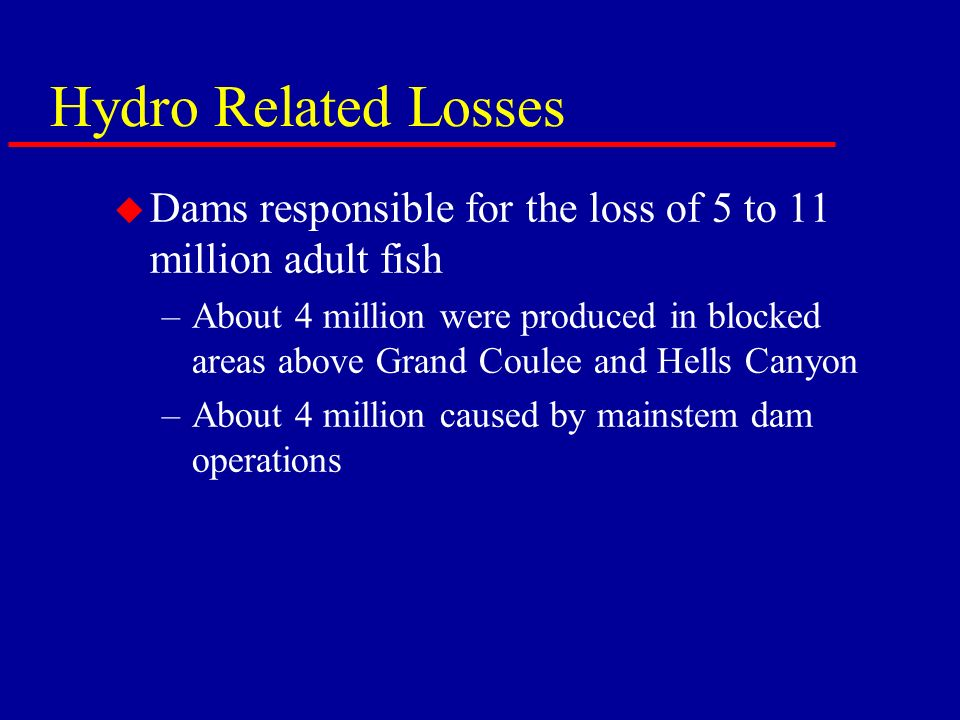 Hydro Related Losses u Dams responsible for the loss of 5 to 11 million adult fish –About 4 million were produced in blocked areas above Grand Coulee and Hells Canyon –About 4 million caused by mainstem dam operations
