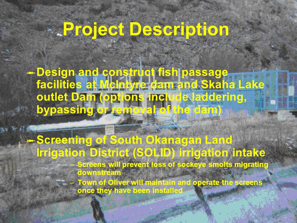 Project Description Design and construct fish passage facilities at McIntyre dam and Skaha Lake outlet Dam (options include laddering, bypassing or removal of the dam) Screening of South Okanagan Land Irrigation District (SOLID) irrigation intake –Screens will prevent loss of sockeye smolts migrating downstream –Town of Oliver will maintain and operate the screens once they have been installed