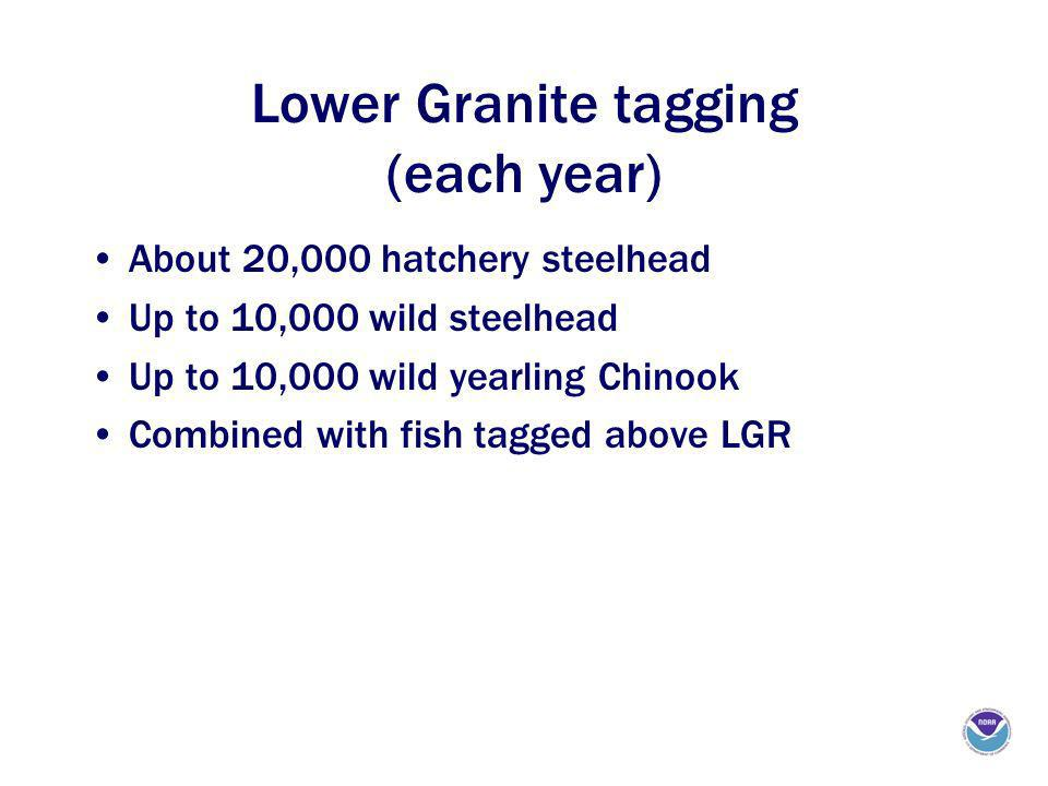 Lower Granite tagging (each year) About 20,000 hatchery steelhead Up to 10,000 wild steelhead Up to 10,000 wild yearling Chinook Combined with fish tagged above LGR
