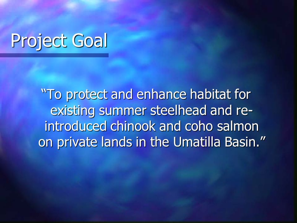 Project Goal To protect and enhance habitat for existing summer steelhead and re- introduced chinook and coho salmon on private lands in the Umatilla Basin.
