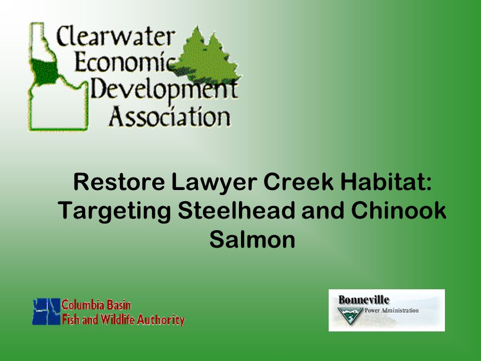 Restore Lawyer Creek Habitat: Targeting Steelhead and Chinook Salmon