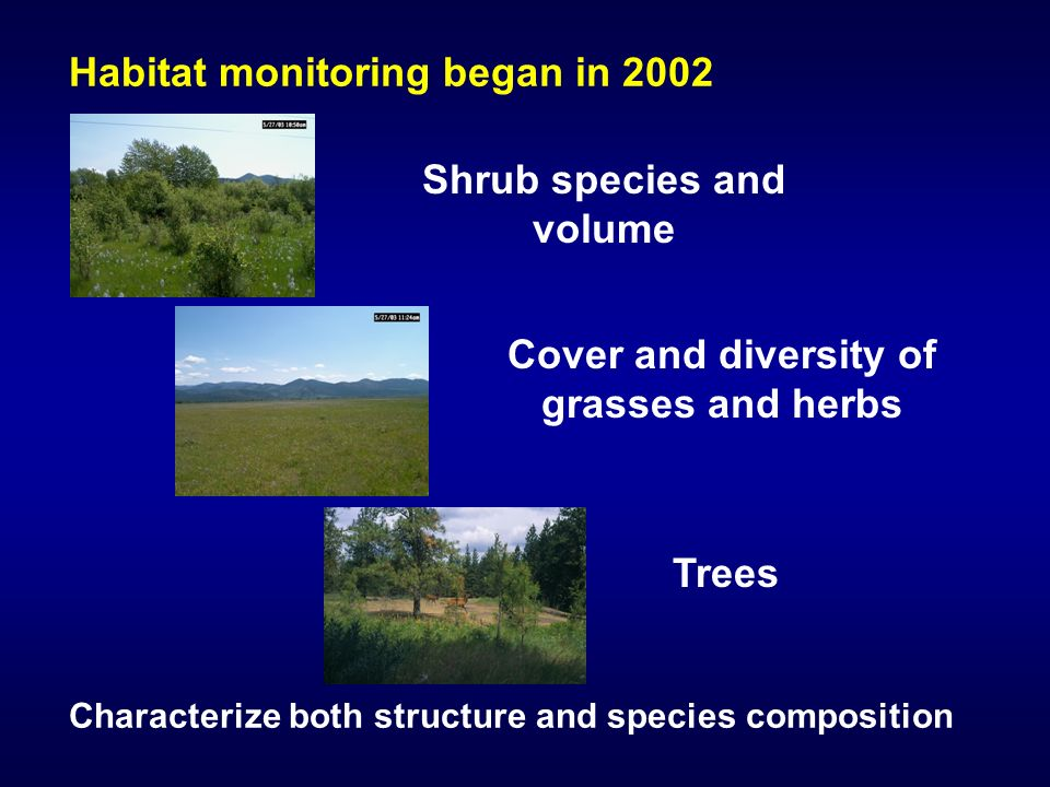 Habitat monitoring began in 2002 Characterize both structure and species composition Shrub species and volume Trees Cover and diversity of grasses and herbs
