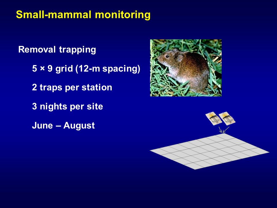 Small-mammal monitoring Removal trapping 5 × 9 grid (12-m spacing) 2 traps per station 3 nights per site June – August