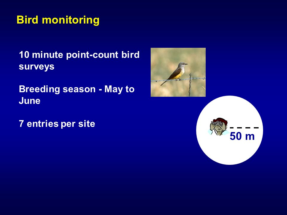 Bird monitoring 10 minute point-count bird surveys Breeding season - May to June 7 entries per site 50 m