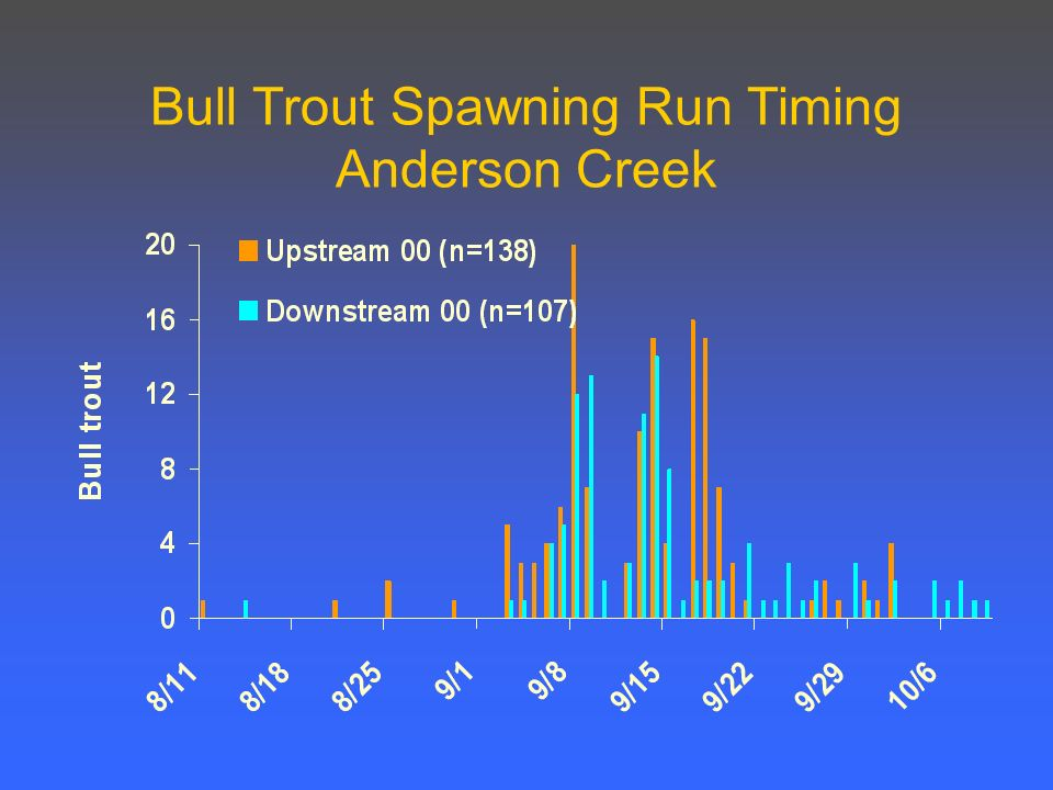 Bull Trout Spawning Run Timing Anderson Creek
