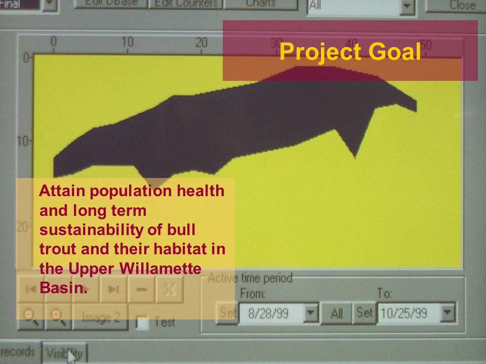Project Goal Attain population health and long term sustainability of bull trout and their habitat in the Upper Willamette Basin.
