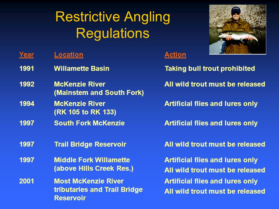Restrictive Angling Regulations YearLocationAction 1991Willamette BasinTaking bull trout prohibited 1992McKenzie River (Mainstem and South Fork) All wild trout must be released 1994McKenzie River (RK 105 to RK 133) Artificial flies and lures only 1997South Fork McKenzieArtificial flies and lures only 1997Trail Bridge ReservoirAll wild trout must be released 1997Middle Fork Willamette (above Hills Creek Res.) Artificial flies and lures only All wild trout must be released 2001Most McKenzie River tributaries and Trail Bridge Reservoir Artificial flies and lures only All wild trout must be released