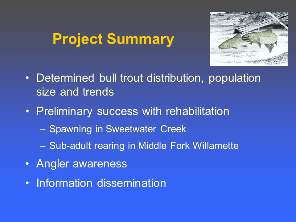 Project Summary Determined bull trout distribution, population size and trends Preliminary success with rehabilitation –Spawning in Sweetwater Creek –Sub-adult rearing in Middle Fork Willamette Angler awareness Information dissemination