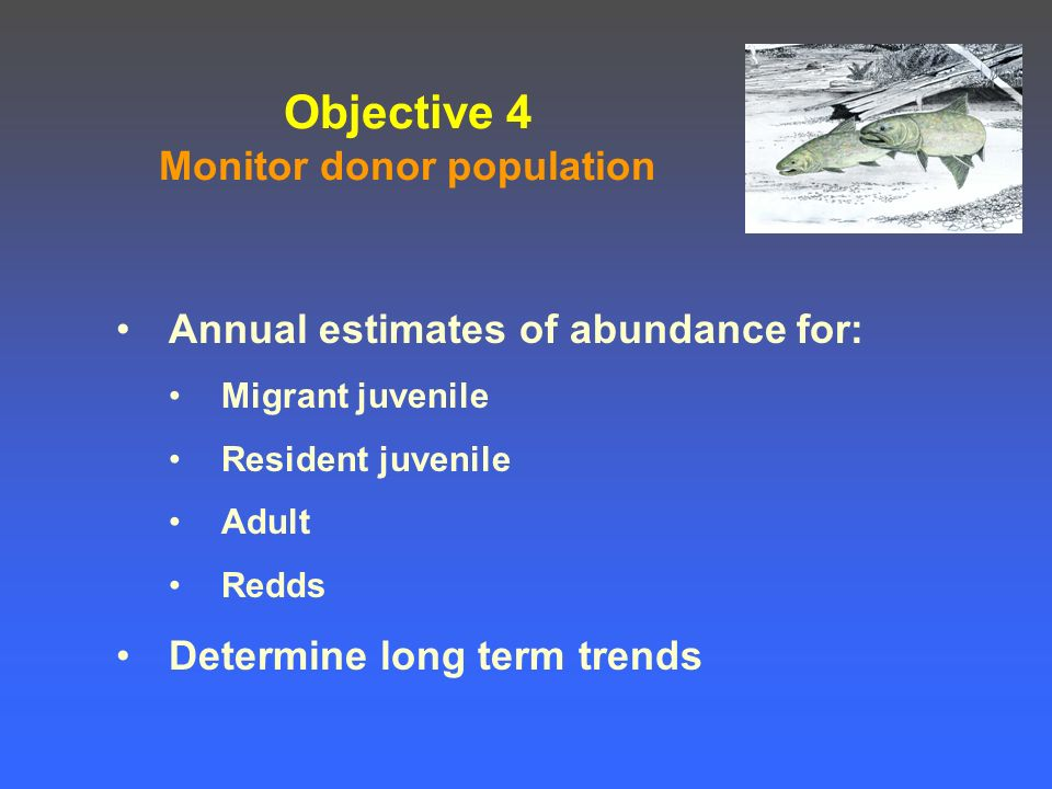 Objective 4 Monitor donor population Annual estimates of abundance for: Migrant juvenile Resident juvenile Adult Redds Determine long term trends
