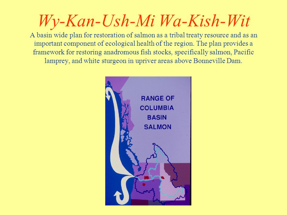 Wy-Kan-Ush-Mi Wa-Kish-Wit A basin wide plan for restoration of salmon as a tribal treaty resource and as an important component of ecological health of the region.