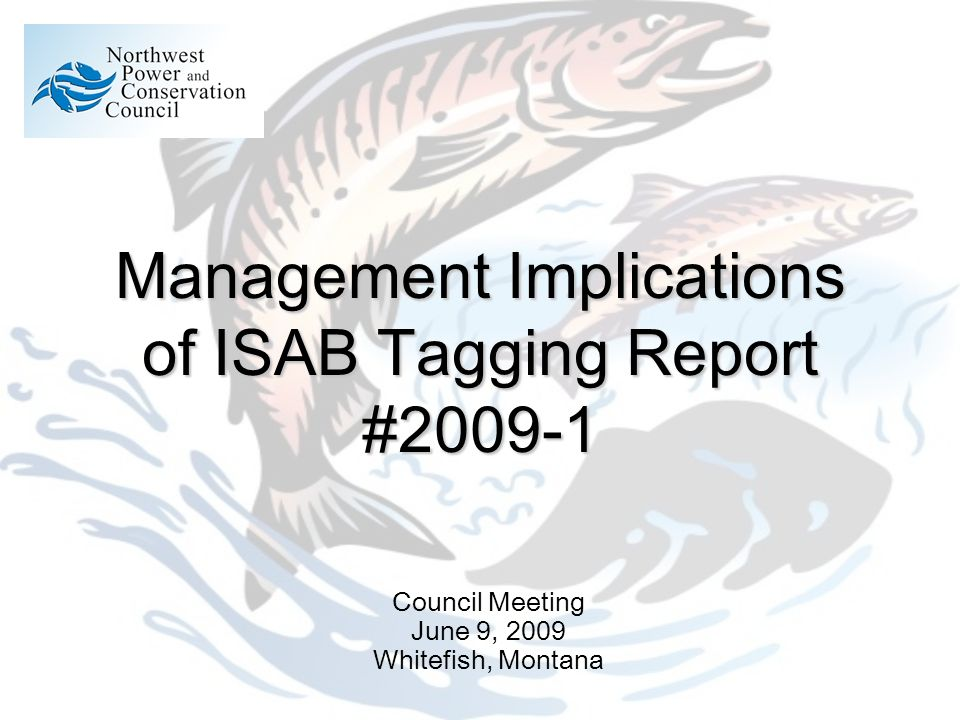 Management Implications of ISAB Tagging Report #2009-1 Council Meeting June 9, 2009 Whitefish, Montana