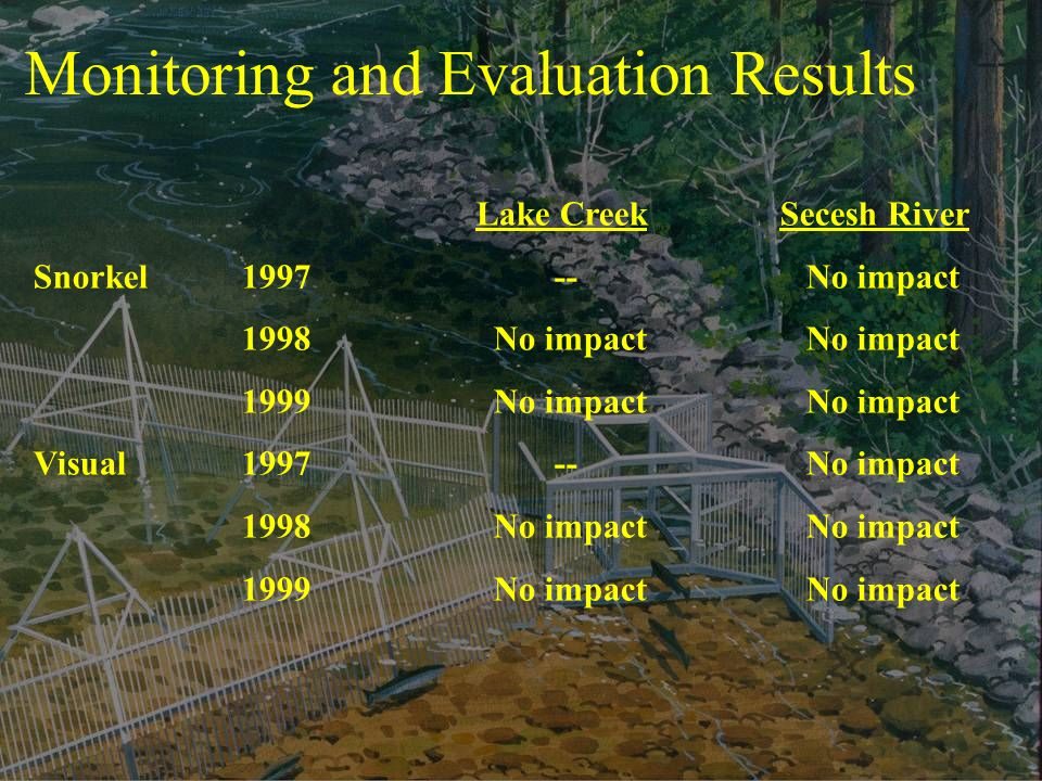 Monitoring and Evaluation Results Lake Creek Secesh River Snorkel No impact 1998 No impact No impact 1999 No impact No impact Visual No impact 1998 No impact No impact 1999 No impact No impact