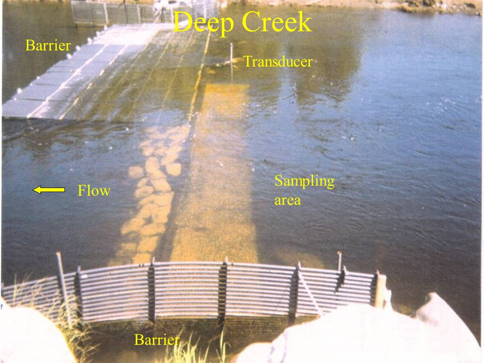 Deep Creek Barrier Sampling area Transducer Flow