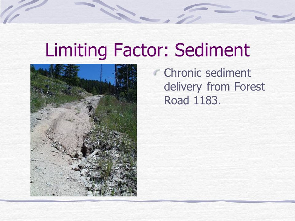 Limiting Factor: Sediment Chronic sediment delivery from Forest Road 1183.